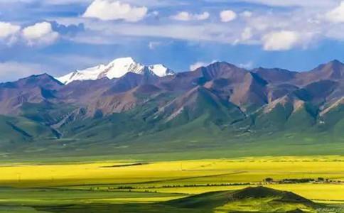常识积累:中国四大高原